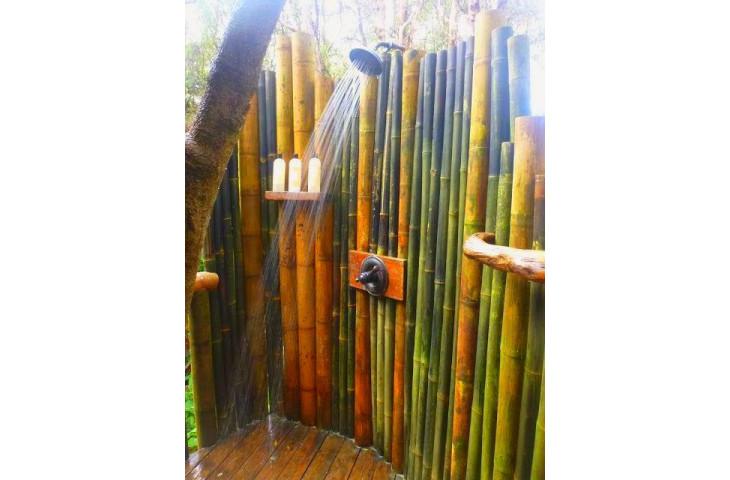 Vendo canne di bambu