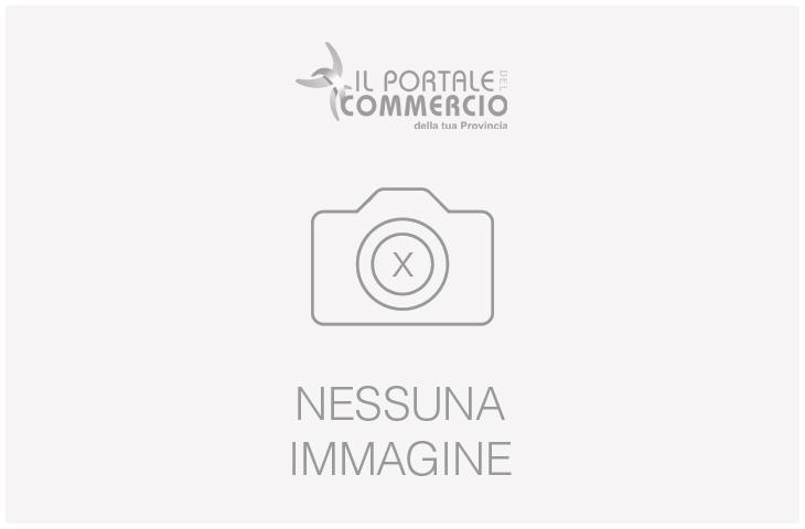 Zanzariera cm 60x160