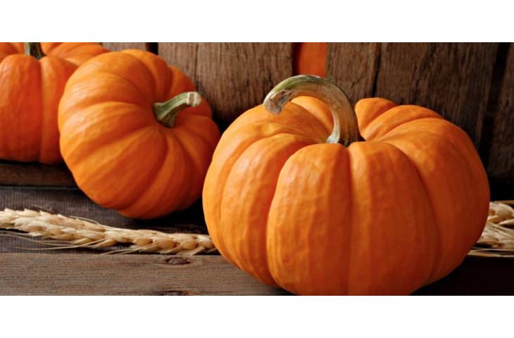 Venerdi 9 novembre festa della zucca
