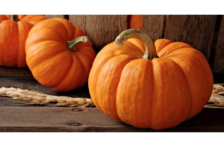 Giovedi 31 ottobre festa della zucca